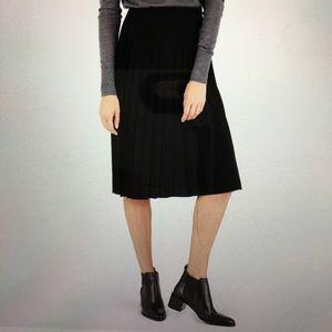 Everlane Pleated Skirt